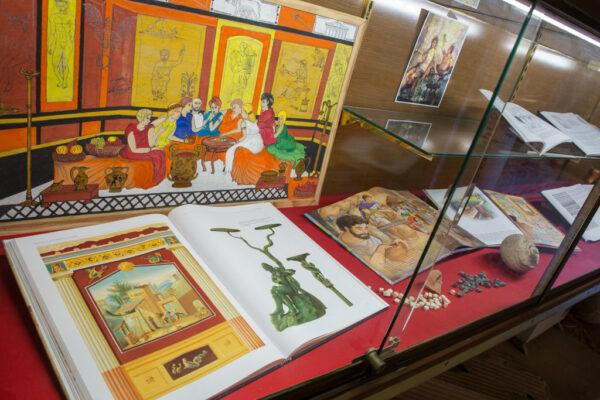 musée_de_tauroentum_vitrines_interieur_page_patrimoine_culturel