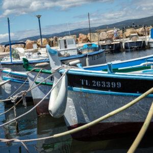 port_de_la_madrague_petits_bateaux_pecheurs