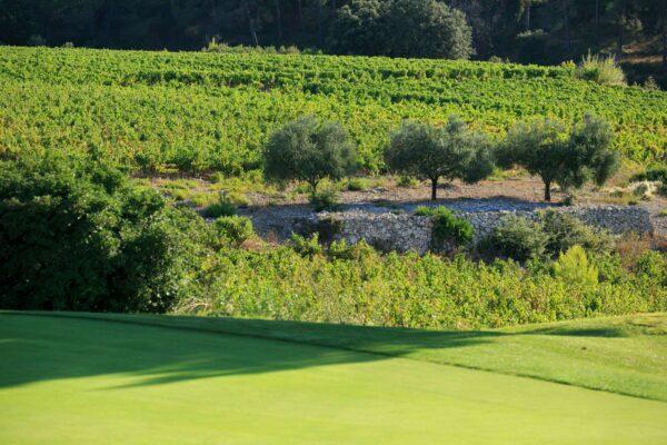 golf_de_fregate_cmoirenc_trou_6 (2)